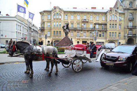 У Львові віз запряжений кіньми протаранив депутатський